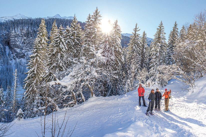 image Haute savoie flaine forum les alpes grand massif 70 montagnes_257